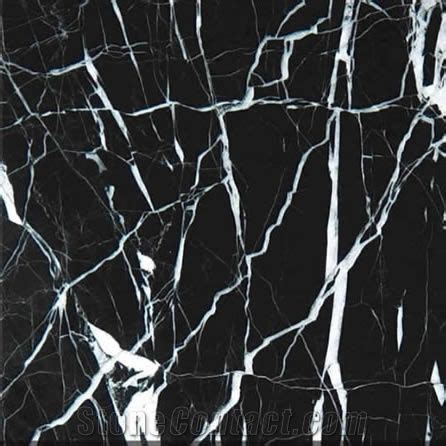 Black- White Stripe Marble from China - StoneContact